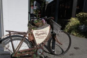 Arrowtownのアンティーク調な自転車