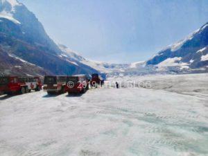 コロンビア大氷原と雪上車