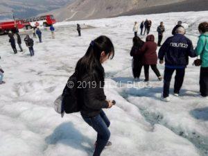 コロンビア大氷原で水を汲む私
