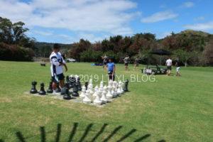 Wild on Waihekeの巨大チェス