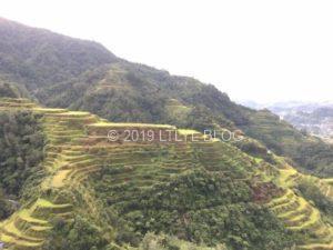 バナウェのRice Terraces
