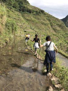 棚田の道を歩く私たち