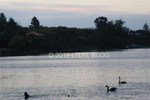 タカプナにある湖