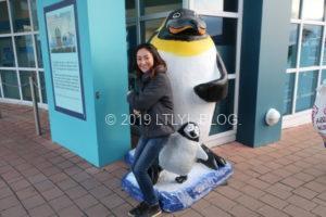 ペンギンと記念撮影