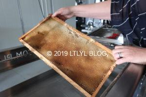 Honey巣箱